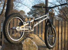 2008 caelifera prototype twenty caelifera1